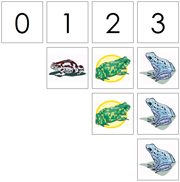 0 to 10 Numbers and Counters (Frogs) - Printable Montessori Math Materials by Montessori Print Shop.