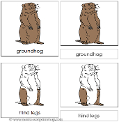 Groundhog Nomenclature Cards - Printable Montessori Learning Materials by Montessori Print Shop.