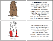 Groundhog Nomenclature Book (red) - Printable Montessori Nomenclature Materials by Montessori Print Shop.