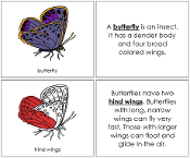 Butterfly Nomenclature Book (Red) - Printable Montessori Nomenclature Materials by Montessori Print Shop.