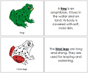 Frog Nomenclature Book (in red) - Printable Montessori Nomenclature Materials by Montessori Print Shop.