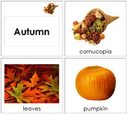 Toddler Autumn Season Cards - Printable Montessori Learning Materials by Montessori Print Shop.
