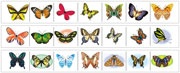 Butterfly Cutting Strips - Printable Montessori preschool Materials by Montessori Print Shop.