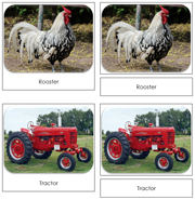 Down on the Farm Safari Toob Cards - Printable Montessori Toob Cards by Montessori Print Shop.