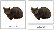 French Cat Cards - Printable French Montessori Learning Materials for home and school.