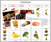Food Groups - Printable Montessori Science Cards by Montessori Print Shop.