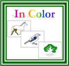 Montessori Nomenclature Cards (with color highlights)