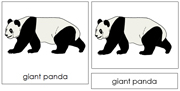 Giant Panda Nomenclature Cards - Printable Montessori Learning Materials by Montessori Print Shop.