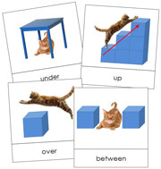 Preposition Cards - Printable Montessori Learning Materials by Montessori Print Shop.