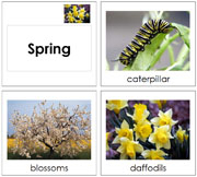 Toddler Spring Season Cards - Printable Montessori Learning Materials by Montessori Print Shop.