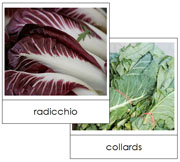 Leaf Vegetable Picture Cards Set 1 - Printable Montessori Learning Materials by Montessori Print Shop.