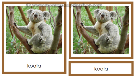 Animals from Australia/Oceania 3-part cards - Printable Montessori learning materials