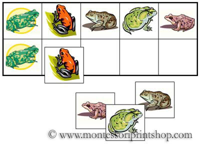 Frog Match-Up and Memory Sheets for Montessori Learning at home and school.
