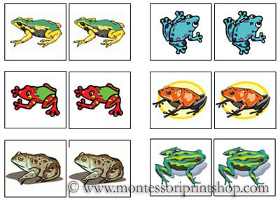 Frog Match-Up Cards for Montessori Learning at home and school