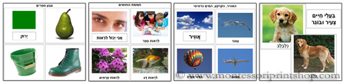 Color Books, The Five Senses, Air Land and Water Sorting Cards, Young & Adult Animals - Printable Hebrew Montessori materials.