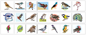 Bird Cutting Strips - Printable Montessori preschool Materials by Montessori Print Shop.