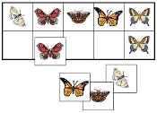 Butterfly Match-Up & Memory Game - Printable Montessori preschool materials by Montessori Print Shop.
