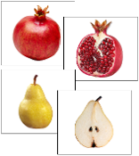 Fruit: Inside and Outside - Printable Montessori preschool materials by Montessori Print Shop.