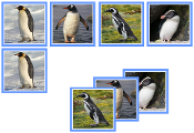 Penguin Matching Cards - Printable Montessori preschool materials by Montessori Print Shop.