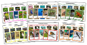 World Vertebrates Sorting Bundle (color borders) - Montessori Print Shop