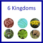 6 Kingdoms of Life - Printable Montessori materials by Montessori Print Shop