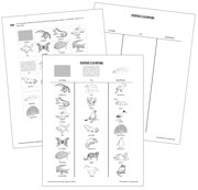Animal Coverings: Blackline Master - Printable Montessori science materials by Montessori Print Shop.