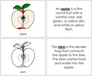 Apple Nomenclature Book (in red) - Printable Montessori Nomenclature Materials by Montessori Print Shop.