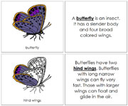 Butterfly Nomenclature Book - Printable Montessori Nomenclature Materials by Montessori Print Shop.