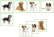 Dog Matching Cards - Printable Montessori preschool materials by Montessori Print Shop.