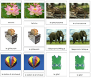 French Classified Cards Bundle - Printable Montessori Hebrew Learning Materials for home and school.