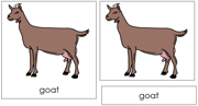 Goat Nomenclature Cards - Printable Montessori nomenclature cards by Montessori Print Shop.
