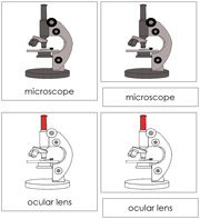 Microscope Nomenclature Cards - Printable Montessori nomenclature cards by Montessori Print Shop.