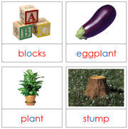 Step 2 Phonetic Picture Cards Level 2 - Printable Montessori Language materials by Montessori Print Shop