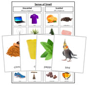 Sense of Smell Sorting - Printable Montessori Science Cards by Montessori Print Shop.