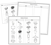 Sense of Touch Sorting (Set 1) Blackline Masters - Printable Montessori Science Cards by Montessori Print Shop.