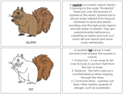 Squirrel Nomenclature Book - Printable Montessori Nomenclature Materials by Montessori Print Shop.