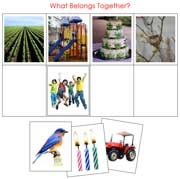 What Belongs Together - Printable Montessori preschool materials by Montessori Print Shop.