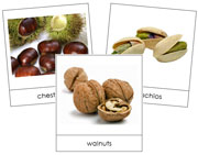 Nut Picture Cards - Printable Montessori Cards by Montessori Print Shop.