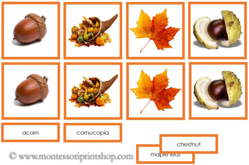 Number Names Worksheets montessori free printable materials : Autumn Photo Matching Cards: Printable Montessori Materials